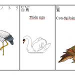 Chia sẻ các phương pháp học tiếng Nhật hay