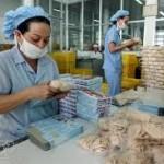 Tuyển 6 nữ đóng gói thực phẩm tại Đài Loan