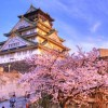 Văn hóa Nhật Bản phong phú đa dạng