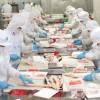 Tuyển 15 nữ thực tập sinh đi Xuất Khẩu lao động Nhật Bản