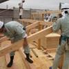 Tuyển gấp 10 nam làm mộc đi xuất khẩu lao động Nhật Bản