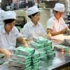 Đơn hàng thực phẩm: Tuyển 12 nữ làm tại Kanagawa