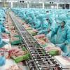 Tuyển dụng lao động đi làm việc tại Đài Loan