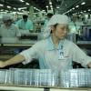 Tuyển 10 nữ làm đồ nhựa tại Nhật Bản