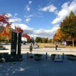 """Top 5 trường Đại học """"hot"""" nhất Nhật Bản"""