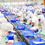 Tuyển nữ thực tập sinh sang Nhật chế biến thực phẩm