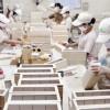 Tuyển 100 nam đóng hộp CN xuất khẩu lao động Nhật Bản