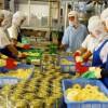 Tuyển 30 nữ làm đóng hộp hoa quả tại Tokushima – Nhật Bản