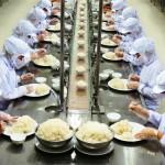 12 Nam nữ đi Đơn hàng cơm hộp tại Fukuoka, Nhật Bản
