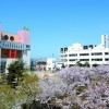Du học Nhật Bản 2017 tại Đại học Aomori Chuo Gakuin