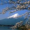 Tìm hiểu trường Nhật ngữ Kaisei Academy khi du học Nhật