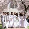 Tìm hiểu Trường Đại học TouA – Nhật Bản