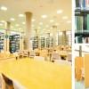 Du học Nhật Bản ngành kinh doanh tại trường Đại học Niigata