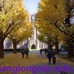 Các trường đại học ở khu vực Tokyo – Nhật Bản