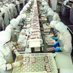 Tuyển 09 lao động sản xuất thực phẩm tại Đài Bắc – Đài Loan