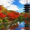 Có nên Du học Nhật Bản tại thành phố Kyoto ?