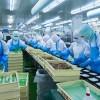 15 Nam xkld Nhật Bản chế biến thực phẩm 154.800 yên
