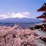 4 địa điểm du học Nhật Bản tốt nhất 2019