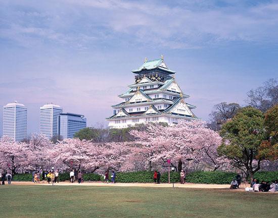 Du học Nhật Bản tại Osaka nên chọn trường nào