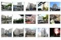 Các trường Nhật ngữ uy tín ở Chiba