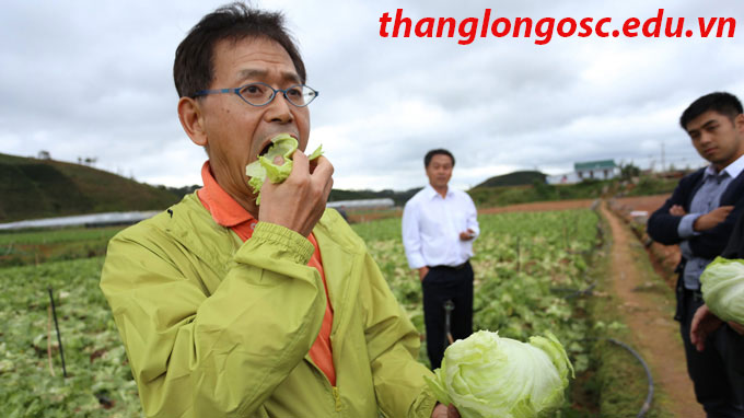 xuat-khau-lao-dong-nhat-ban-don-hang-1-nam-thu-nhap-cao