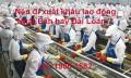 Nên đi xuất khẩu lao động Nhật Bản hay xuất khẩu Đài Loan?