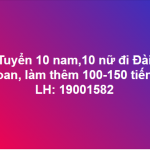 Tuyển 20 nam nữ đi XKLĐ Đài Loan bay gấp làm thêm 150 tiếng