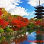 Du học Nhật Bản tại thành phố Kyoto