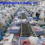 Đơn hàng tuyển 09 nữ xuất khẩu lao động chế biến thủy sản tại Nhật Bản