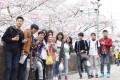 Không học trường tiếng có đi du học Nhật Bản bậc đại học được không?