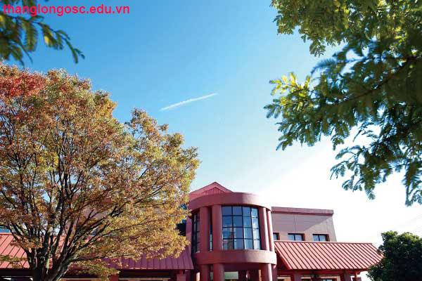 trường hana đại học Nihon Fukushi