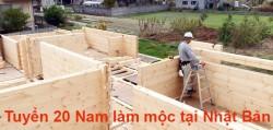 Tuyển 12 Nam làm mộc lắp ghép nhà gỗ tại Nhật Bản lương cao