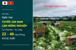 don-hang-di-nhat-1-nam-lam-nong-nghiep-phi-thap