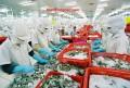 xuất khẩu lao động làm chế biến thủy hải sản tại Hokkaido