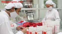 Tuyển 5 nữ sang Đài Loan làm công xưởng nhà máy sx thuốc tây