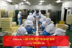 don-hang-lam-com-hop-tai-nhat-ban