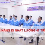 đơn hàng đi nhật lương cao 47 triệu