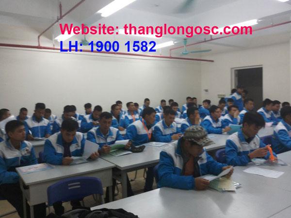 don-hang-xkld-nhat-ban-thang-8-2019