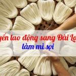 Tuyển gấp 01 nam sản xuất mỳ sợi tại Đài Loan