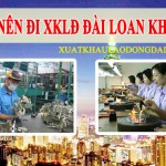 co-nen-di-xuat-khau-dai-loan