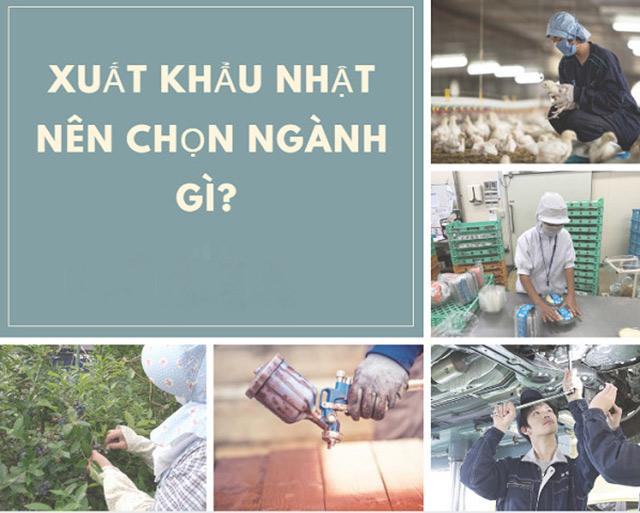 2-nen-chon-cong-viec-gi-khi-di-xuat-khau-nhat-ban-vay