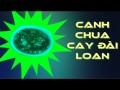 canh-chua-cay-dai-loan