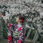 Phấn đấu du học Nhật Bản để thỏa ước mơ mặc váy dạo ngắm hoa anh đào