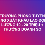 Tuyển Trưởng phòng Xuất Khẩu Lao Động