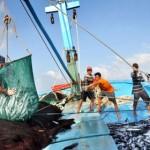Xuất khẩu lao động Quảng Trị: Hướng đi mới của người dân