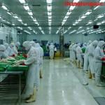 Thang Long OSC tuyển 09 Nam đóng gói thực phẩm tại Yokohama