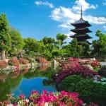 Giới thiệu về tỉnh Chiba của Nhật Bản