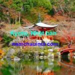 Điểm danh các trường Nhật ngữ ở Kyoto – Nhật Bản